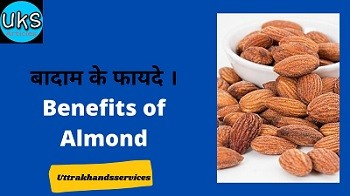 bthama-ka-fayatha-benefits-of-almonds
